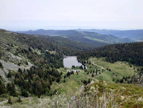 Randonner aux Lac Vert et Lac Forlet